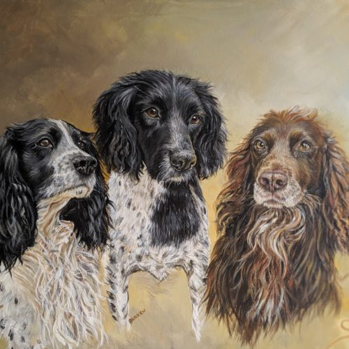 A selection of commissioned animals portraits 2015 – 2020