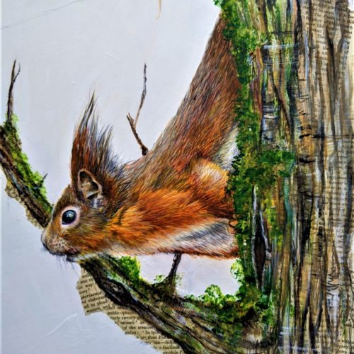 Red squirrels in mixed media New for 2020