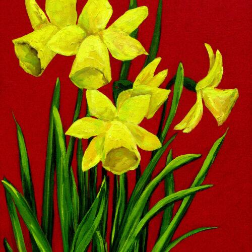 Daffodils-1-thumb